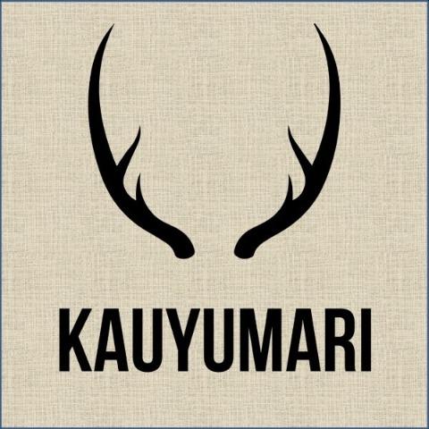 Kauyumari Centro de Cultura y Nuevas Tecnologías